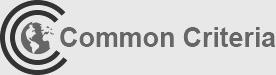 Common Criteria_New Background