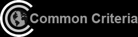 Common Criteria_new